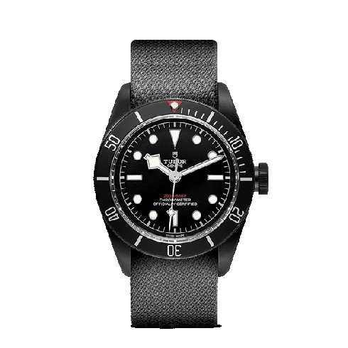 Montre TUDOR Heritage Black Bay Dark